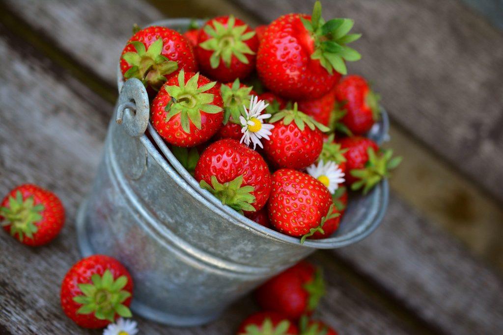 Erdbeeren in einem Blecheimer