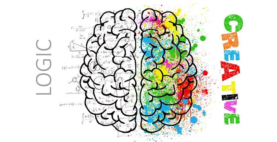 """Zwei gezeichnete Gehirnhälften, eine mit bunten Klecksen und Schriftzug """"Creative"""", die andere mit eingezeichneten Formeln und Schriftzug """"Logic"""""""