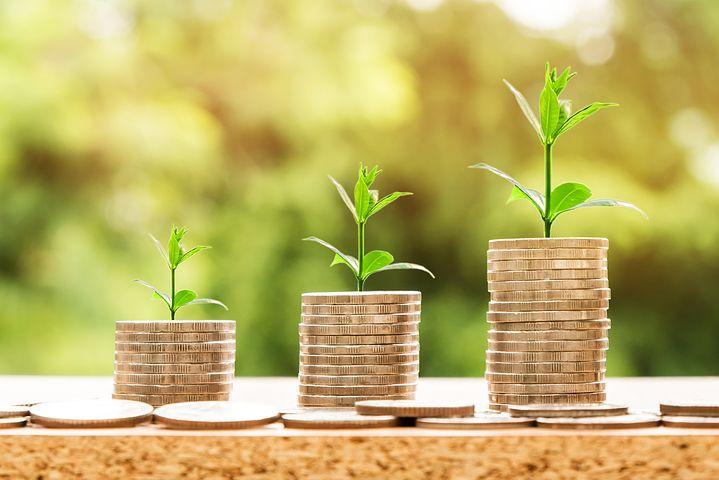 Drei verschieden hohe Stapel Geldscheine mit Pflanzen dahinter
