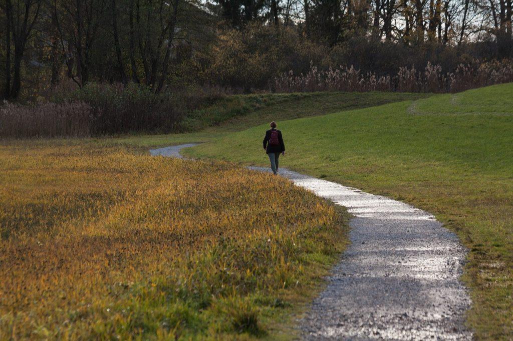 Ein Wanderweg zwischen Wiesenfeldern. Auf dem Wanderweg ist eine Frau von hinten mit einem Rucksack.