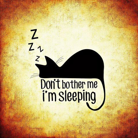 """Gezeichnetes Bild einer schlafenden Katze mit dem Spruch """"Don't bother me, I'm sleeping"""""""