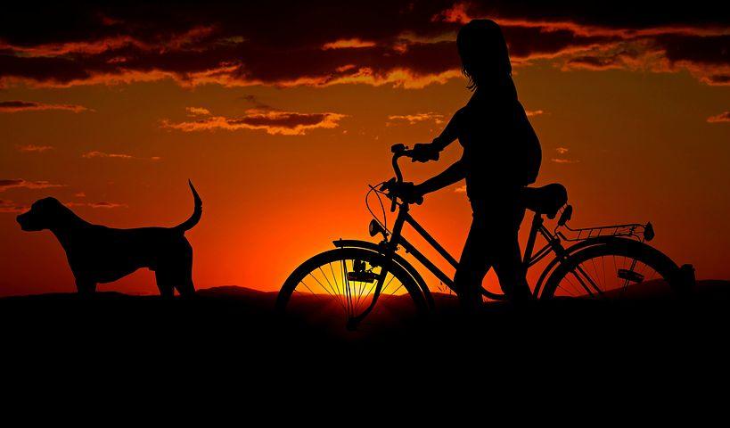 Mensch mit Fahrrad und Hund vor Sonnenuntergang