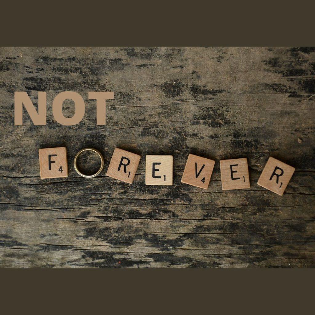 """Text """"Not forever"""", teils aus Scrabble-Steinen, das O ist ein Rind"""