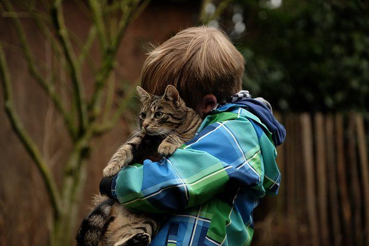 Kind schmust mit Katze auf seinem Arm